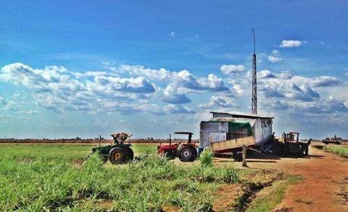 Karuturi-farm-in-Gambella-Ethiopia