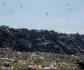 Plans for New Sanitary Landfill Promise Short-Term Solution to Armenia's Waste Problems