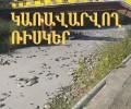 Հարցում տեսչական մարմնին Ողջի գետը պոչանքներով աղտոտելու դեպքի վերաբերյալ