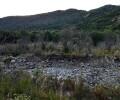 ՀԷԿ-երը շարունակում են ոչնչացնել մեր գետերը․ տեսանյութ